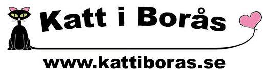 KIBlogga1